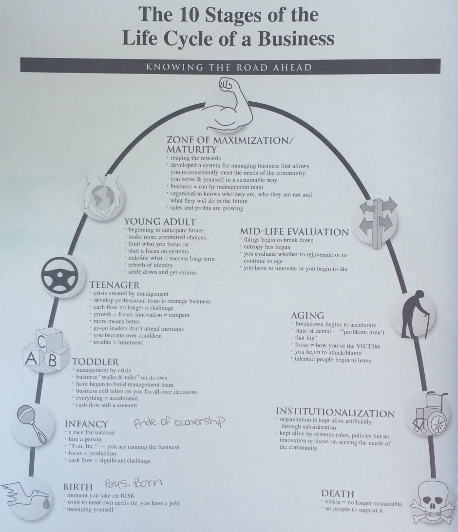Life Cycle of a Business